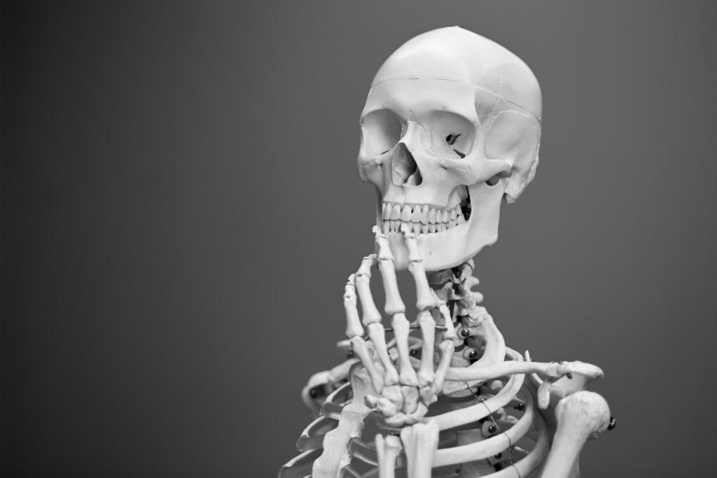 halloween skeleton display